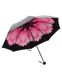 Parapluie & Ombrelle